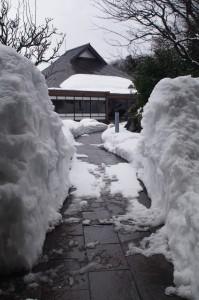 雪のプロムナード