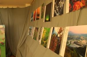 幡谷廣司さん撮影の美しい越中万葉の植物や故地の写真